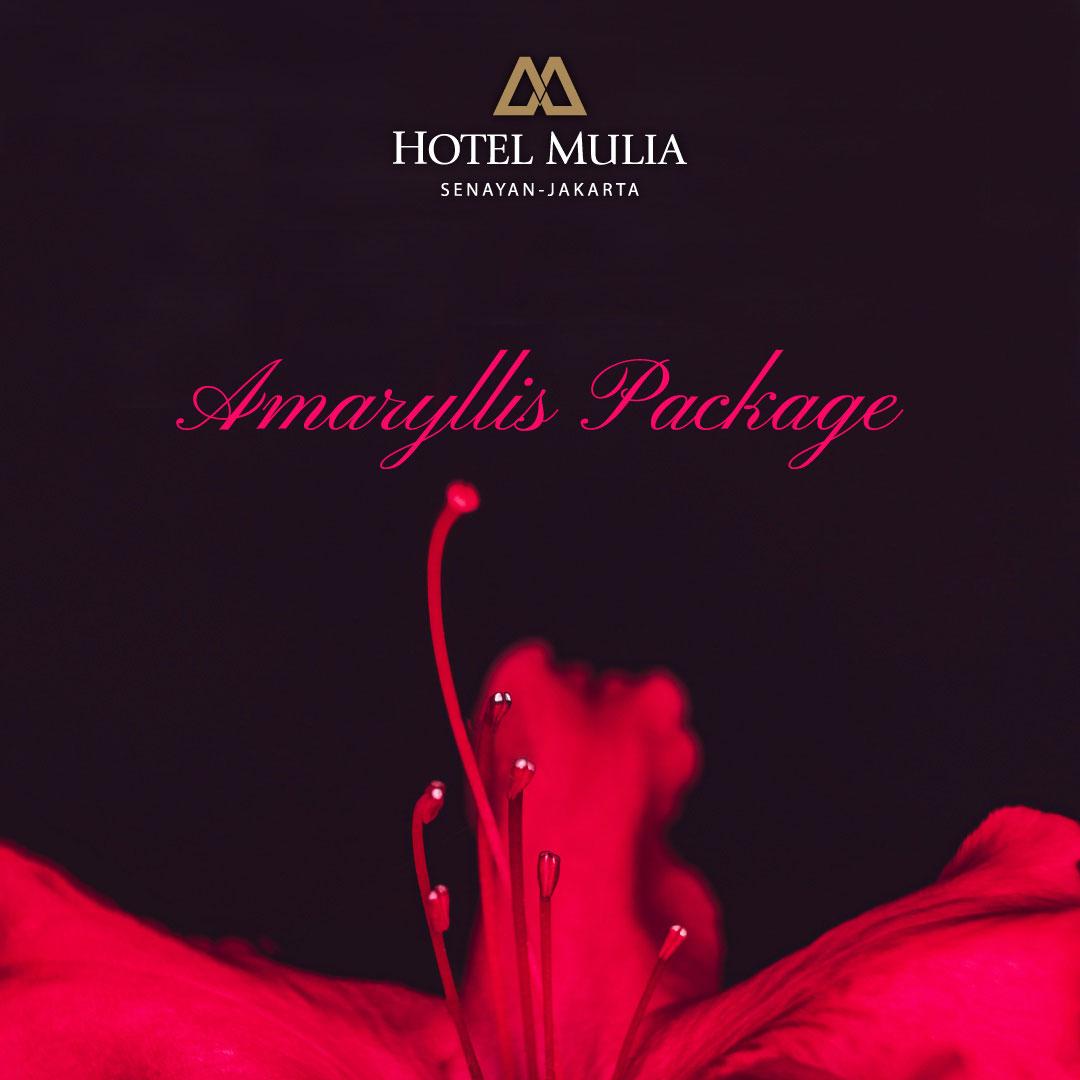 Amaryllis Wedding Package